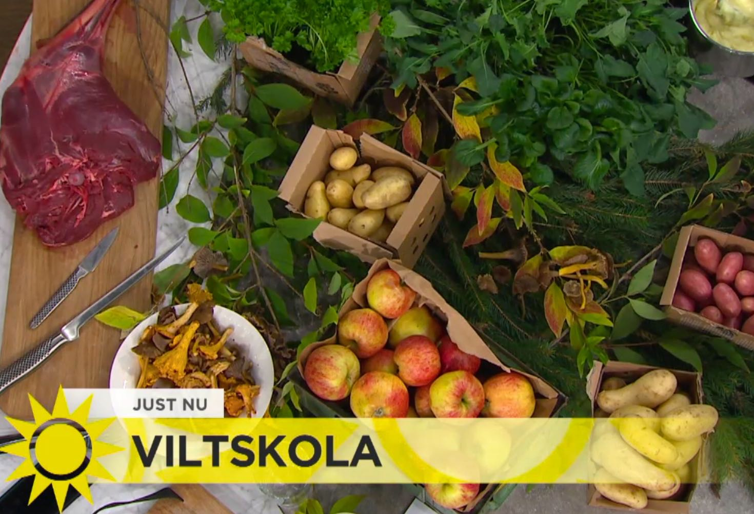 Svenskt viltbord med rådjur, lingon, svamp & örter