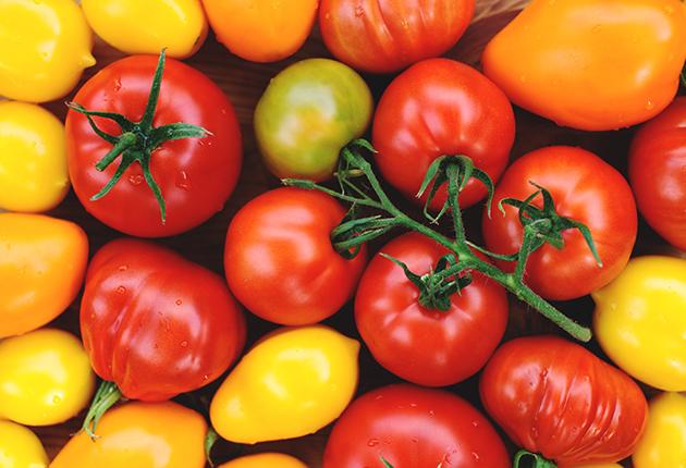 Med kärlek till de svenska tomaterna!