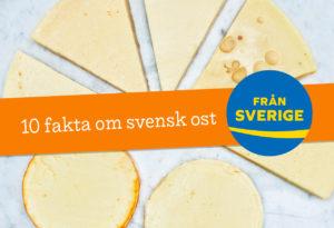 fakta om svensk ost