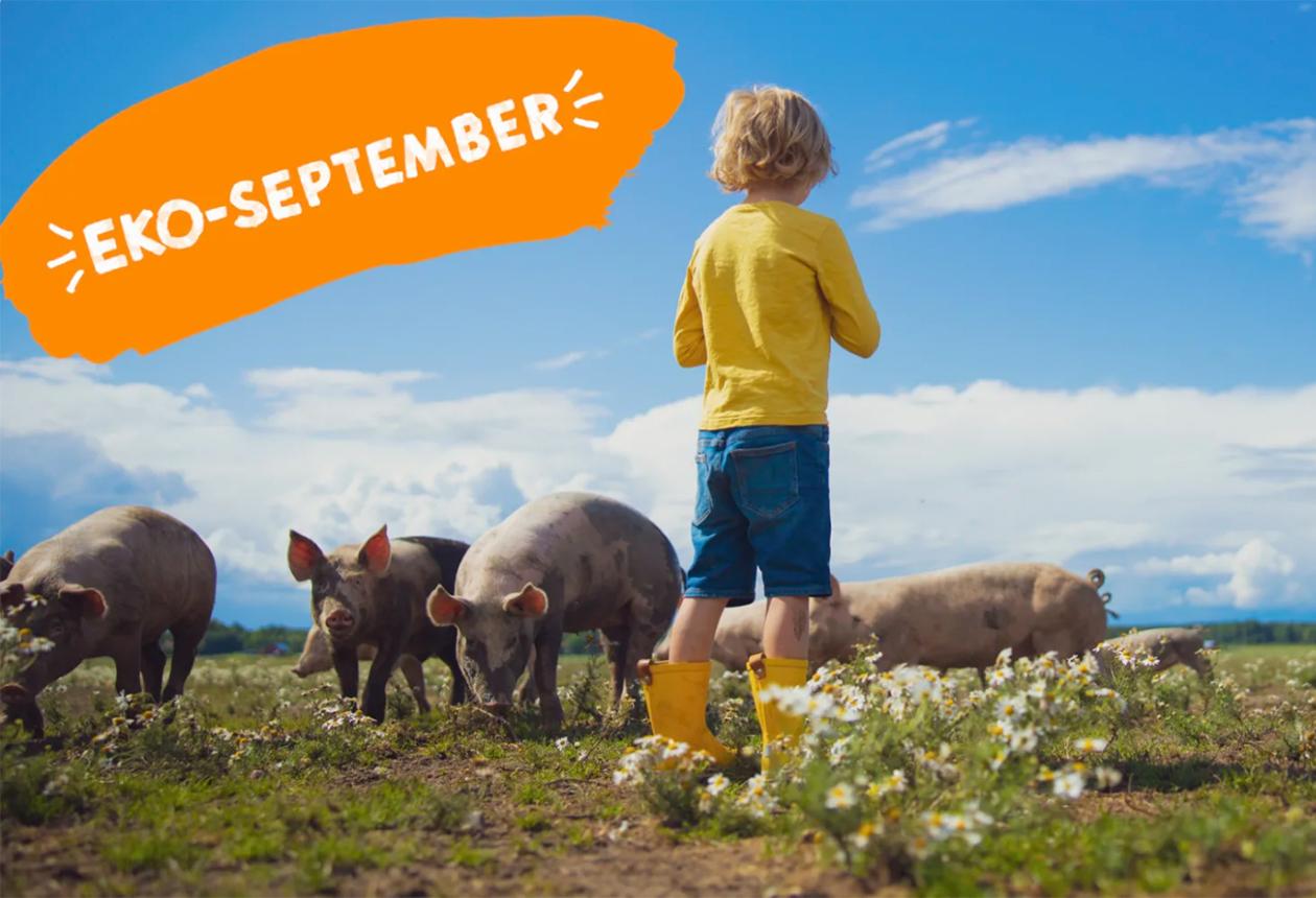eko-september